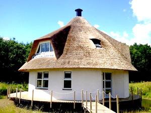 Камышовая крыша и ее особенности